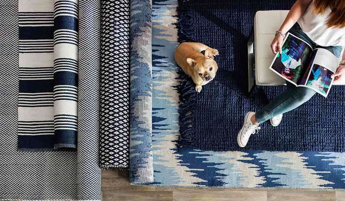 Bright & Bold Rugs for a Stylish Space