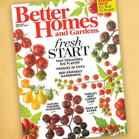 Better Homes & Gardens April 2016 Issue photo