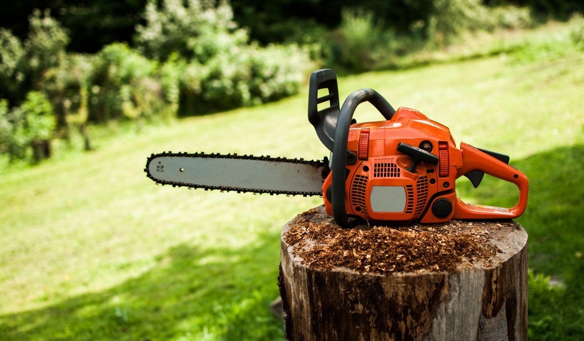 Best Chainsaws of 2017