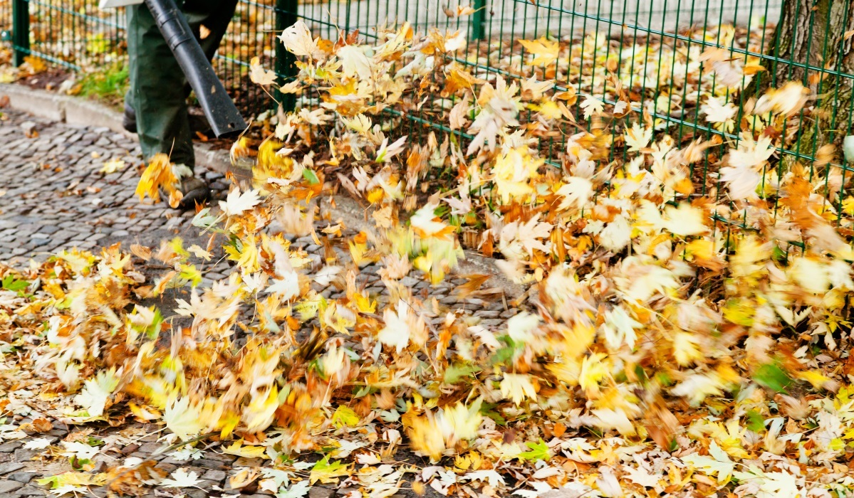 Best Leaf Blowers of 2017