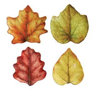 Plates made to look like a variety of leaves photo