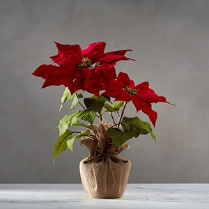 Faux poinsettia potted inside a plastic pot wrapped in burlap. photo
