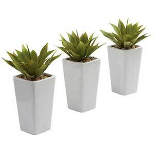 Three white planters with plants inside photo