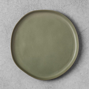 Target Hearth and Hand stoneware dinner plate photo