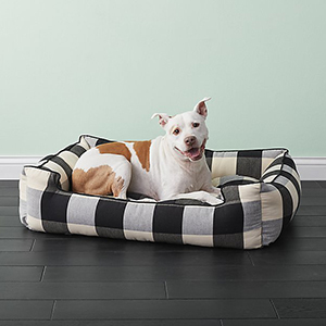 8 Dog Beds You Your Furry Companion Will Love Bhg