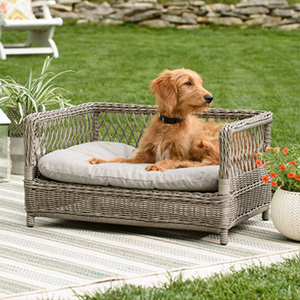 Hayneedle Boomer and George wicker pet Bed photo