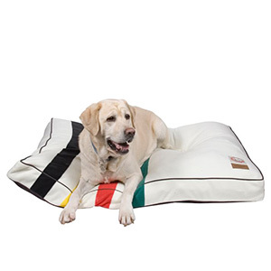 Pottery Barn dog bed with blue, orange, and black stripes photo