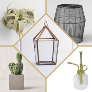 Brass lantern paired with a wire table, a faux cactus, a plant, and a plant mister. photo