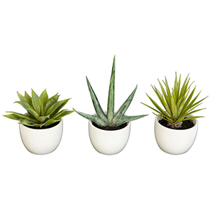 Set of three artifical succulents with planters photo