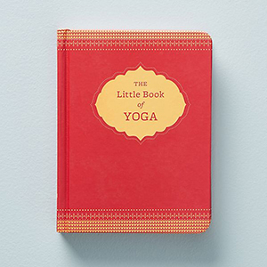 The Little Book of Yoga from Anthropologie photo