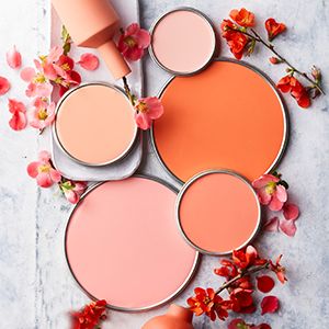 Peach-colored paint can lids on gray background with flowers around it. photo