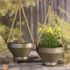 Two silver bowls filled with plants hanging inside photo