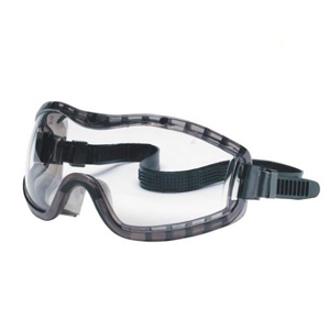 Pair of clear safety goggles with a black strap. photo
