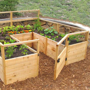 Large raised-garden kit with walls, small door, and walk-in space. photo