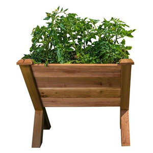 Small wooden garden wedge with green plants inside. photo