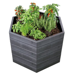 Raised-garden bed in the shape of a hexagon filled with plants. photo