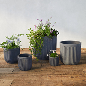 Black concrete barrel pots in various sizes from Terrain photo