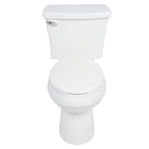 White toilet with overflow protection photo