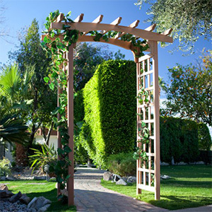 Red cedar arbor with bow-shaped top and lattice side panels photo