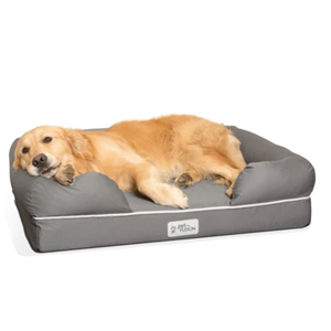 Golden retriever lying in a dark gray PetFusion dog bed from Amazon. photo