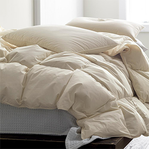 Home Depot down comforter photo