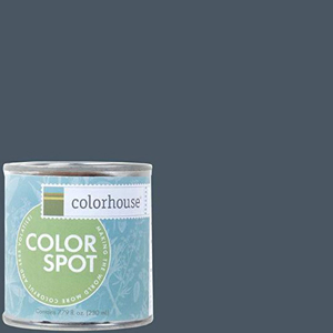 Navy blue paint with Colorhouse bucket. photo