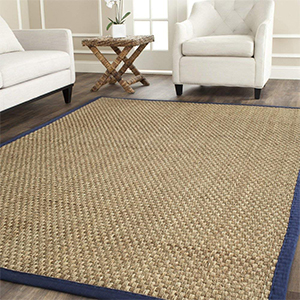 Seagrass area rug in natural with blue edge and white furniture around it photo