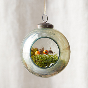 Glass ornament with plant inside photo