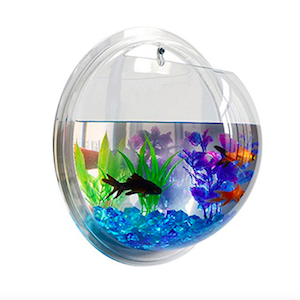 Clear acrylic wall mounted bubble fish tank from Fish Bubble photo