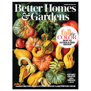 Collection of gourds on the cover of a magazine photo