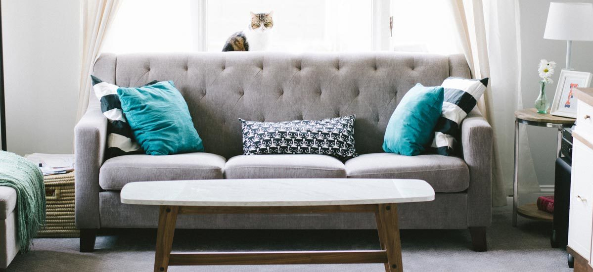 Absolutely Everything You Need to Refresh Your Living Room on a Budget