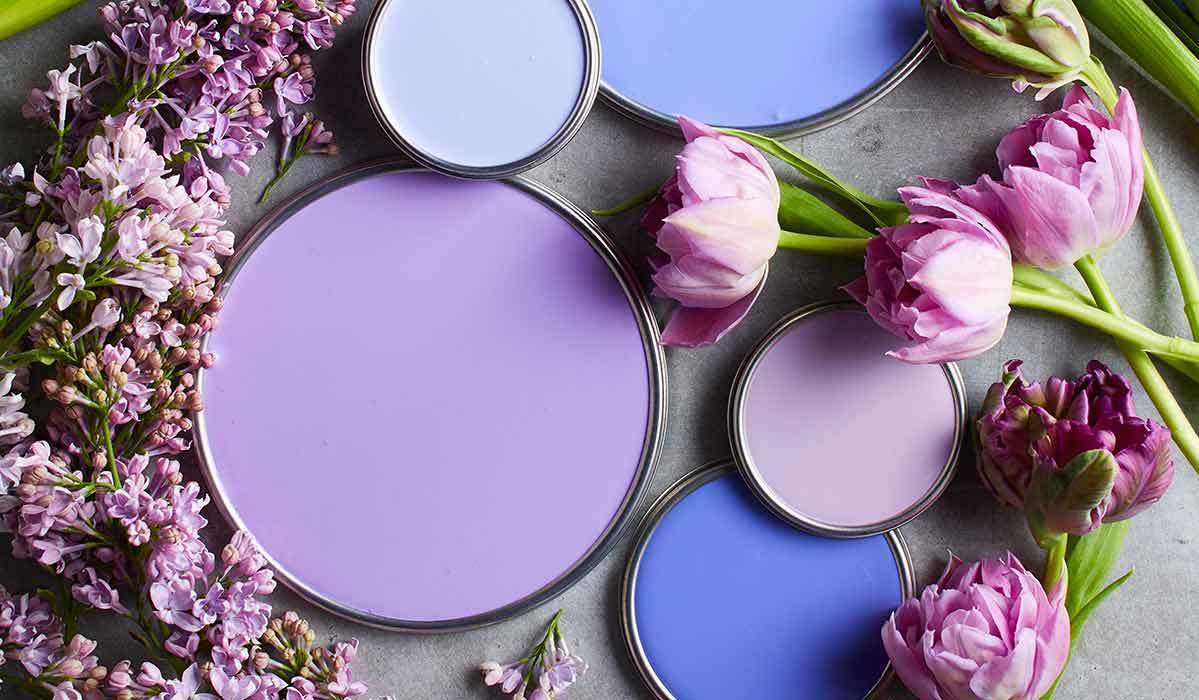 Purple paint lids surrounded by lilac and lavender photo