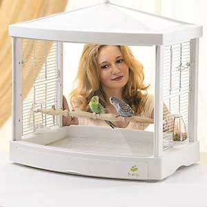 Clear Caitec bird cage with white top and bottom and two small birds inside photo