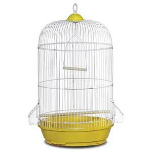 Small circular Prevue bird cage with yellow detailing at the top and bottom and two perches photo