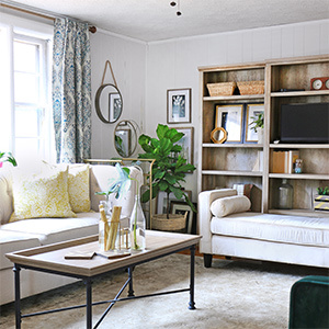 Fiddle leaf fig tree and wall accents decorated in a living room. photo