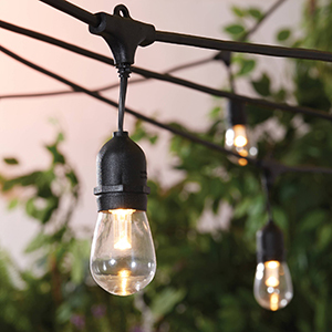Close-up of Better Homes & Gardens cafe patio string lights with trees in the background photo