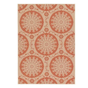 Medallion outdoor rug from Walmart photo