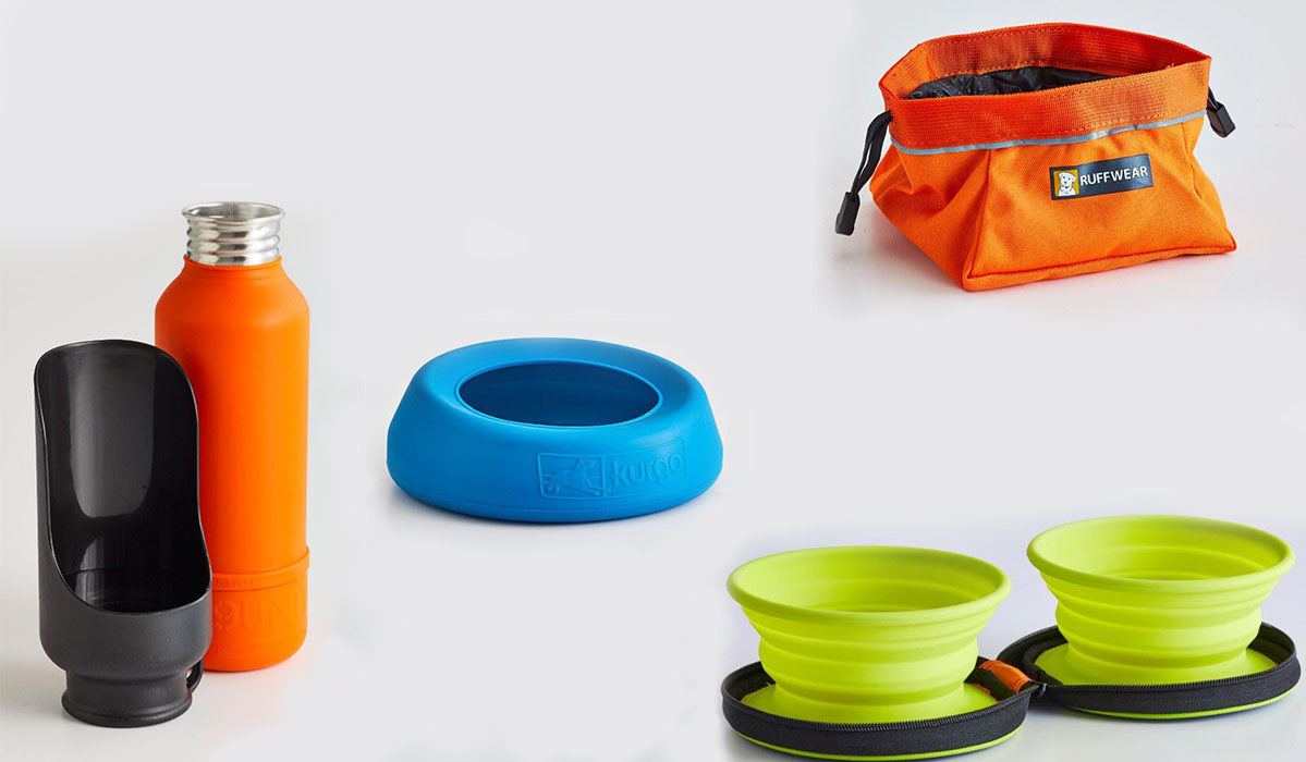 Portable water bowls for pets photo