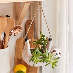 Hanging ceramic sloth with a plant photo