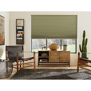 Living room with green cellular shades photo