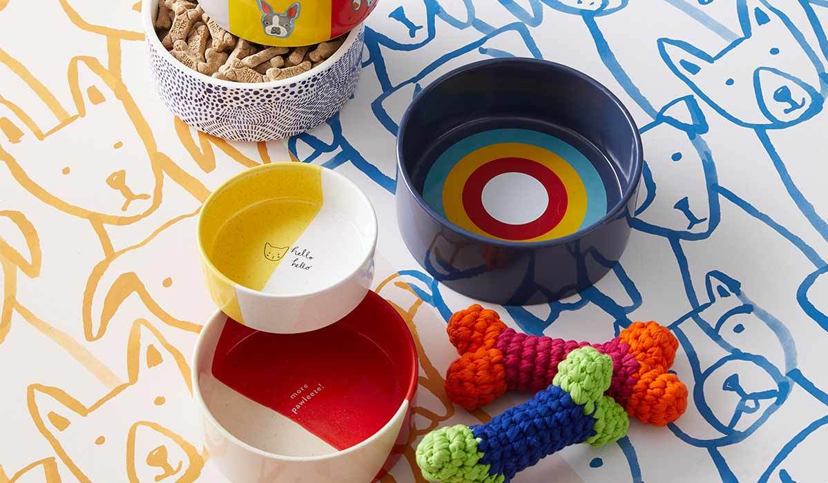 Five colorful dog bowls and two knitted bones photo