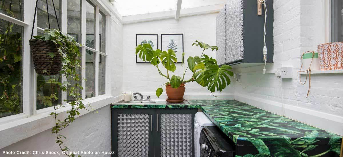 Laundry room with plants and open windows