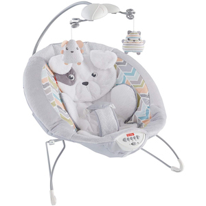 Fisher-Price Sweet Dreams Snugapuppy Deluxe Bouncer photo