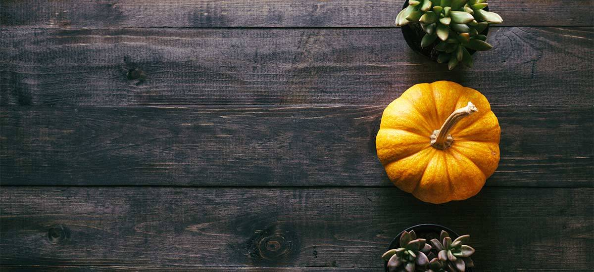 Simple Fall Table Decorations You'll Love to Show Off