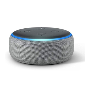 Amazon Echo Dot 3rd Generation in Heather Gray photo