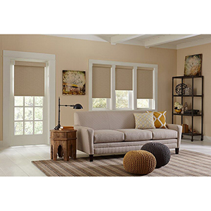 Living room with blackout roller shades from Blinds.com photo