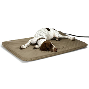 Dog lying on a beige heated bed photo