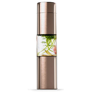 Brass colored stainless steel water bottle with a clear middle from Neiman Marcus photo