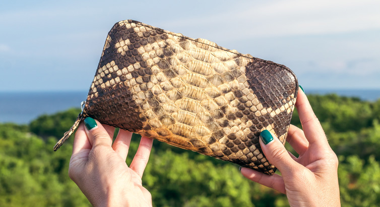 6 Snakeskin Statement Pieces You'll Want to Sport This Season