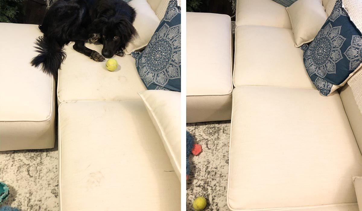 Before and after cleaning the Coddle sectional sofa photo